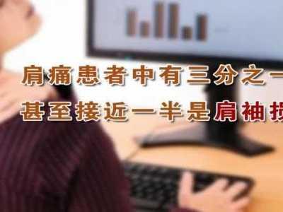 20131125养生堂 付中国讲肩袖损伤